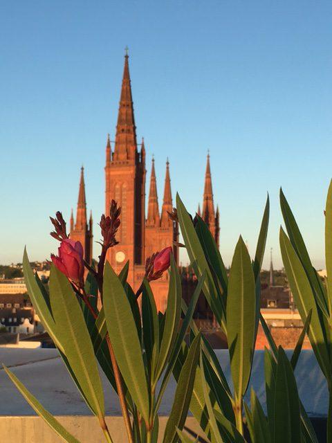 ...mit herrlichen Abenden über den Dächern unserer Stadt.